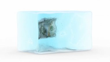 Dollar Frozen in a Block of Ice — Stock Video