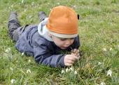 Child and snowdrops — Stock Photo
