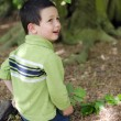 Child under tree in forest — Stock Photo #59879811