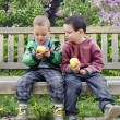 Children eating apples — Stock Photo #60251035
