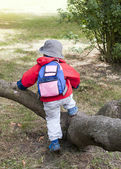 Enfant grimpe sur l'arbre — Photo
