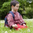 Child picking daisy flowers in spring — Stock Photo #63586659