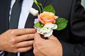 Men hands fastened boutonniere, closeup — Stock Photo