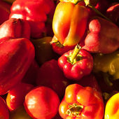 Collected a lot of sweet peppers background, shallow depth of field — Stock Photo