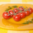Cherry tomatoes on a branch on a yellow plate — Stock Photo #67764779