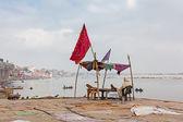 Man sat looking at the view of the Ganges at Varanasi, India. — Stock Photo