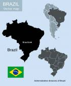 Vector illustration of Brazil geographic map — Stock Vector