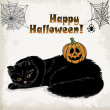 Halloween card template with a cat, pumpkin, spider and spider web. Vector illustrations — Stock Vector #54106765