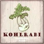 Fresh vegetables sketch background. Vintage hand drawing illustration of a kohlrabi — Stock Vector #54408937