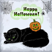 Card of Halloween cat and pumpkin with green eyes — Stock Vector