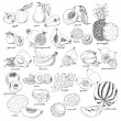 Collection of fruit in sketch style — Stock Vector #66995505