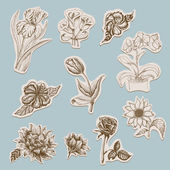 Collection of flowers in tags — Vector de stock