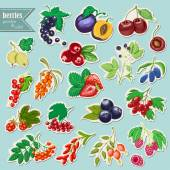 Vector collection of isolated garden and wild berries. Sticker elements — Stock Vector