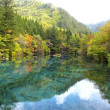 Autumn in Jiuzhiagou National Park in Sichuan China — Stock Photo #69385311