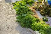 Vegetables for sale on roadside — Stock Photo