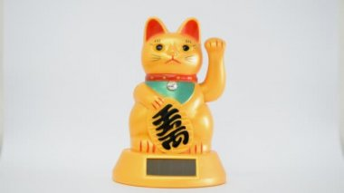 Oriental waving cat — Stockvideo