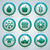Food, fruit, meat, and fish vector icons set, design, nine web buttons — Stock Vector
