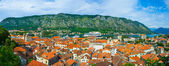 Kotor in the palm — Stock Photo