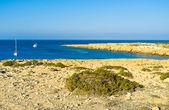 The indented coastline — Stock Photo
