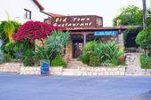 The restaurant with garden — Photo