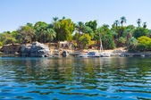The island in Nile — Stock Photo