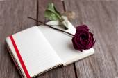 Dried rose and open book on the table — Foto de Stock