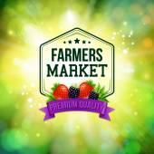Farmers market poster. — Stock Vector