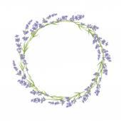 ラベンダーの花の輪 — ストックベクタ