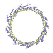 Circle of lavender flowers — Stock Vector