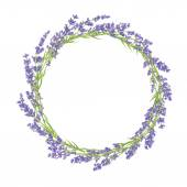 Circle of lavender flowers — Stok Vektör