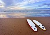 Surf boards lying on beach — Stock Photo