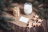 Cookies and milk for Santa Claus — Zdjęcie stockowe
