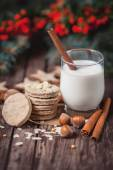 Cookies and milk for Santa Claus — ストック写真