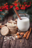 Cookies and milk for Santa Claus — Stockfoto