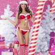 Woman in sexy lingerie of santa claus — Stock Photo #56899813