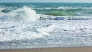 Surf on the Beach and Seagulls — Stock Video