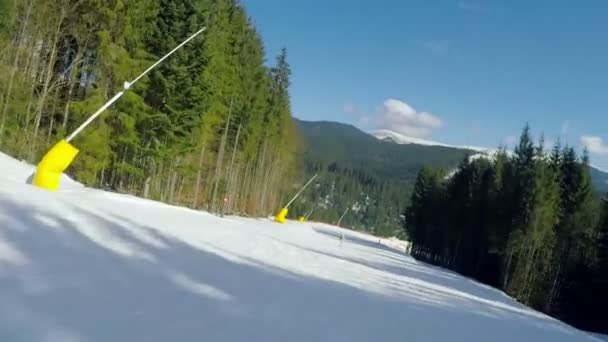 Esquí alpino — Vídeo de stock