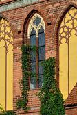 Catedral de koenigsberg, fragmento de fachada — Stockfoto