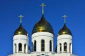 Domes of Cathedral of Christ the Saviour. Kaliningrad, Russia — Foto Stock