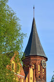 Tower Koenigsberg Cathedral, symbol of Kaliningrad, Russia — Stock Photo