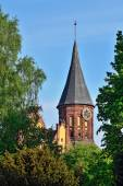 Koenigsberg Cathedral - symbol of Kaliningrad, Russia — Zdjęcie stockowe