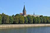 Konigsberg Cathedral. Symbol of Kaliningrad. Russia — Stock Photo