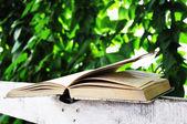 Libro e natura — Foto Stock