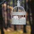 Vintage birdcage hanging on tree branch, white candles inside — Stock Photo #59855237
