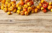 Rowan berry on wooden table — Stock Photo