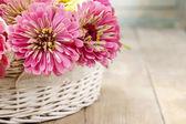 Bouquet of zinnia flowers in wicker basket. — Zdjęcie stockowe