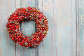 Holiday door wreath with rose hip, hawthorn and rowan berry — Stock Photo