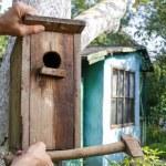Bird house in the garden — Stock Photo #60182631