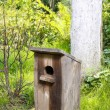 Bird house in the garden — Stock Photo #60182653