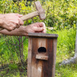 Bird house in the garden — Stock Photo #60182669